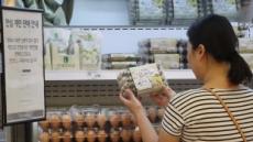[살충제 계란 파동 ②]  '인체무해' 발표에도…소비자들 '못믿겠다'