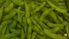 [9월은 대장암의 달 ②] 건강식품 대명사 '콩', 대장암 예방하는 효과 있다
