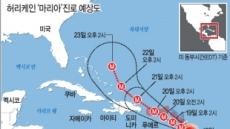 '어마'지나가니 '마리아'… 공포 휩싸인 카리브해