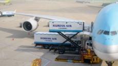 국내 항공사 과징금 올해에만 57억…대한항공 33억 '최다'