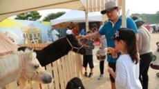 말(馬) 문화축제를 아시나요…영험한 말과 친구되기
