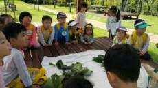 남양주시 '참참참, 참나무 꿈터', 유아 산림교육프로그램 국가인증