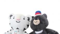 """평창동계올림픽 국민 66.6% """"성공적으로 치러질 것"""""""