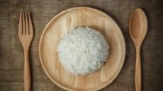 [이 맛에 산다 ②] 쌀이 살아있네…밥의 변신은 무죄