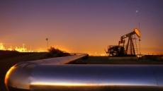 "OPEC ""세계 석유 수요, 2022년까지 안정적 증가"""