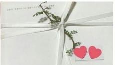 송중기♥송혜교, 중국 언론통해 공개 된 순백의 청첩장