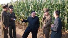 김정은 공개활동, 軍 분야 편중 심화