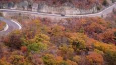 [헤럴드포토] '가을의 절정…'