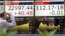 '13일 연속 상승' 날개 단 日닛케이, 21년 만에 최고가