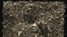 사슴뼈 무덤 사이로 보이는 미켈란젤로의 '다비드'…김두진 개인전