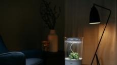 실내 스마트화분 '블룸엔진'으로 셀프 인테리어 가능해