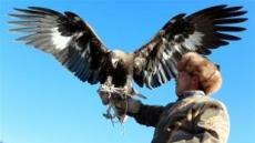 [세상은 지금]키르기스스탄 '독수리 사냥 축제'