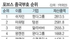 """""""재산 46조원""""…쉬자인, 中 최고부호 등극"""