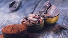 카카오·석류·오렌지·레드와인 등에 듬뿍…여심 잡는 '폴리페놀'