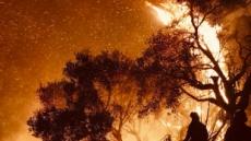 """美 캘리포니아 산불 2주째…""""기후변화 재앙, 뉴 노멀 됐다"""""""