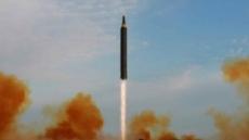 中 올해의 한자, '북핵 위기(朝核危機)'와 '핵(核)'