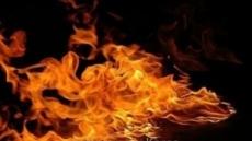 세종시 돈사 화재… 돼지 2840마리 떼죽음