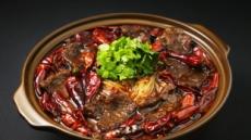 [대동맛지도가 움직인다 ①] 대륙의 맛, 지역별로 먹어요