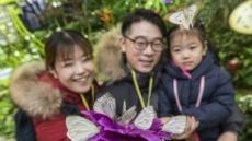 봄 재촉하는 7천마리의 나비…에버랜드 나비정원 오픈
