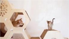 국내 반려동물 가구 박사가 만드는 '모듈형 원목 캣타워'