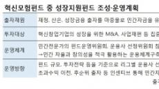 10조원 '혁신모험펀드' 가시화…초대형IB도 운용사 자리 '눈독'