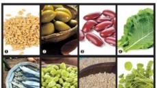 혈압·혈당 조절엔'보리'…철분·칼슘 보충'강낭콩'…암환자의 원군'물냉이'
