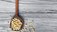 식물성 단백질 제왕…콩, 다같은 콩 아니다