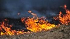 경북 영덕 칠보산 자락 산불…2시간 넘게 번지는 중