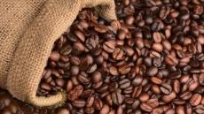 한국은 커피공화국,  '1년간 265억잔, 1인당 512잔 마셔'