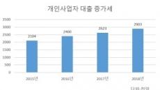 3년간 40% 증가…300조원 육박한 개인사업자 대출