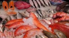 수협, 연근해 어획량 회복 나선다…22억원 투입