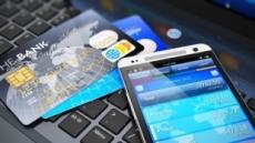 '수수료 도둑' 해외 카드 사용시 원화결제 사전차단제 도입