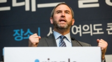 """리플 CEO """"블록체인으로 실시간 해외송금 제공…가상화폐는 아직 통화 아냐"""""""