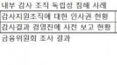 [금융회사 지배구조 개편⑤]감사 위상 강화로 내부통제 튼실히