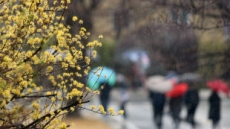 [날씨] 월요일 전국 흐리고 봄비…밤에 그칠 듯