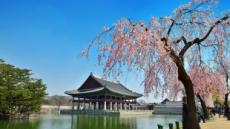봄 꽃대궐의 백미, 경복궁 경회루, 다시 국민에 문 활짝