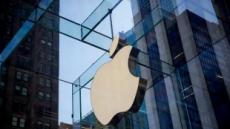 """""""애플, 처음으로 자체 스크린 개발…삼성·LG 대체"""""""
