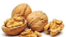 하루 호두 5알·땅콩 30알…뇌가 건강해진다
