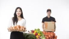 신선식품 '미래 먹거리 vs 수익성 악화'…갈림길에 선 이커머스