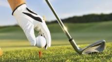 작년 골프인구 469만명…골프 대중화 '성숙' 단계