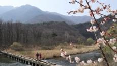[봄나들이, 건강부터 ①] 해빙기 미끄러운 산에서 한번 삔 발목, 계속 삐어요