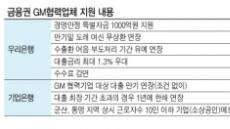 은행권, 연쇄부도 위기 GM협력사  '일단 만기연장'