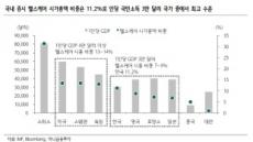 """""""삼전ㆍSK하이닉스는 '싼 주식'""""…반도체, 다시 증시 대표선수로?"""