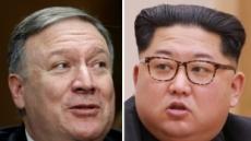폼페이오, 극비 방북해 김정은과 만나…'비핵화' 조율 가능성
