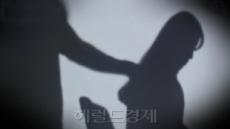"""日 직장여성 29% """"성희롱 경험"""""""