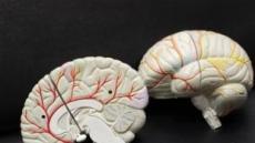 [생생건강 365] 뇌졸중, 사전예방ㆍ조기 검진만이…