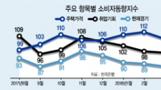 부동산 '겨울왕국' 여파…소비자심리 5개월째 하락