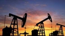 사우디, 2년내 12조 규모 비석유분야 민영화 한다