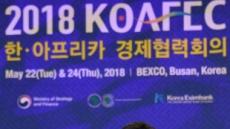 """김동연 부총리 """"아프리카, 4차산업혁명기술 적용시 스마트인프라 산실"""""""