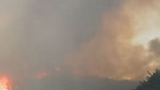 광주 봉선동 아파트 10층서 불, 1명 사망